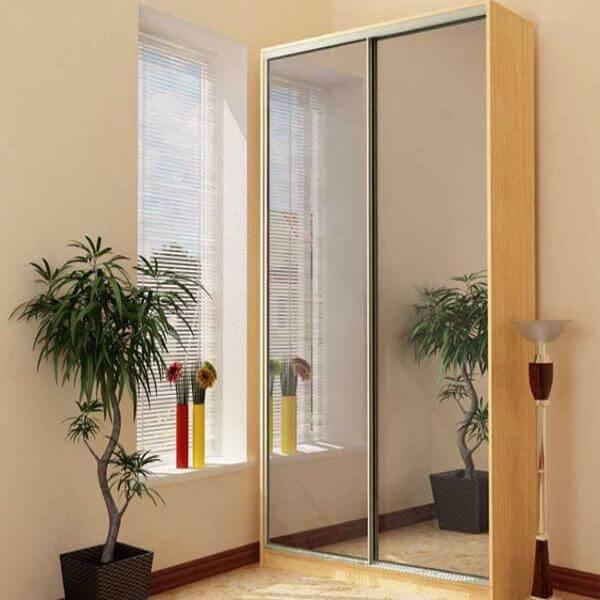 Заказать корпусный шкаф-купе фасады зеркало серебро 2-х двер.